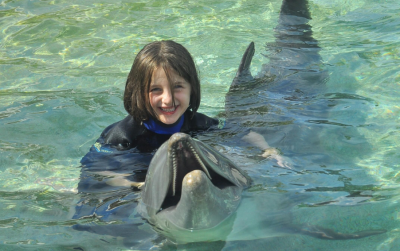 Dolphin program and back to School