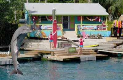 Miami Seaquarium show schedule